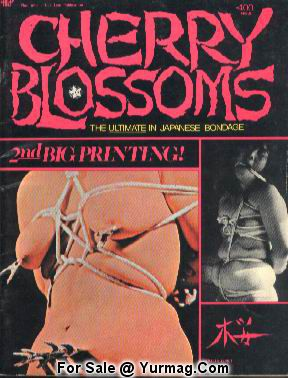 porn magazines japanese Vintage